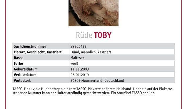 Toby wird in Veenhusen vermisst