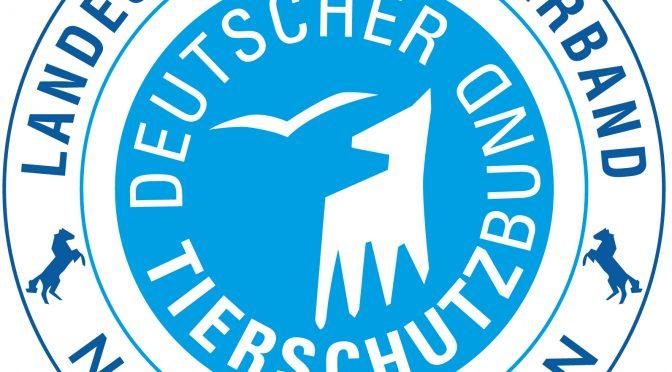 Niedersachsen stimmt im Bundesrat dem erleichterten Abschuss von Wölfen zu