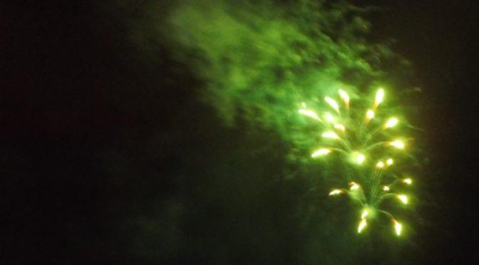 Feiern ohne Feuerwerk – Petition von Rettet den Regenwald e.V.